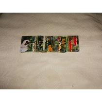 32 Tarjetas De La Serie....flores...de Brasil......