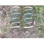 Espirales Traseros De Ford Corcel.