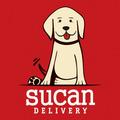 Alimento Para Perros Todas Las Marcas Envìo Gratis En El Día