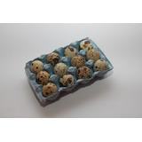 Bandeja / Maples De Huevo De Codorniz (12 Huevos)