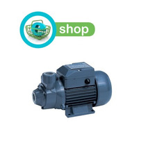 Bomba De Agua Periférica Eléctrica Gamma Qb60 1/2hp