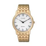 Reloj Citizen Eco-drive Caballero Ar1122-54a