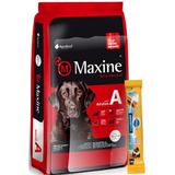 Maxine Perro 21 Kg + Dentastix + Envío Gratis