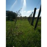Campo En Rocha (posible Arriendo)