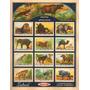 Lámina 45 X 30 Cm. - Suchard 16 - Fauna Africana