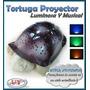 Tortuga Veladora Proyector Luminoso Estrellas En Dormitorio