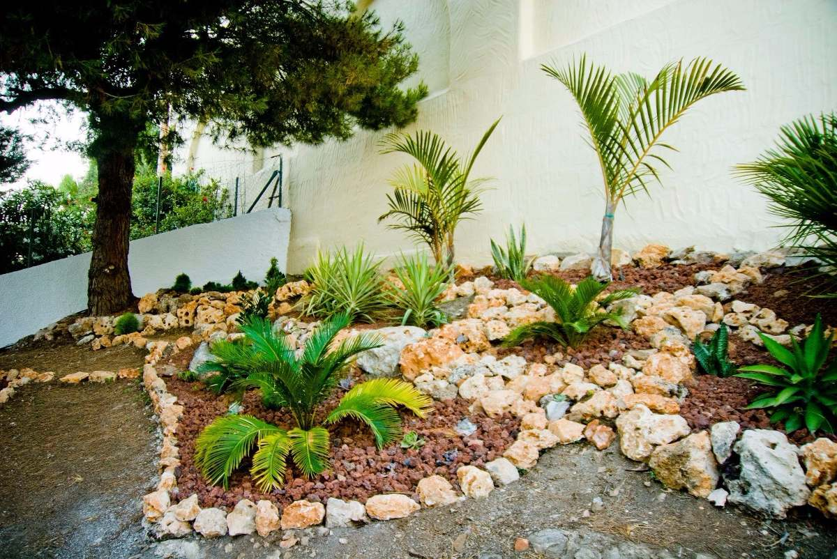 Jardineria limpieza de terrenos parques paisajismo poda for Servicios de jardineria y paisajismo