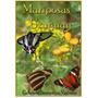 Mariposas De Uruguay, Argentina, Brasil Y Paraguay