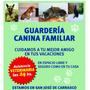 Guarderia Canina Ciudad De La Costa,hotel, Pensionado Perros