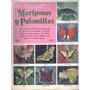 Un Libro De Oro De Etampas Galería Mariposas | LIBRERIA HORIZONTE